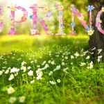 The spring equinox and a fresh start