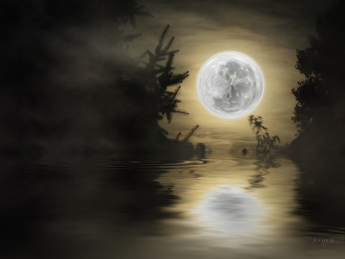 New Moon.jennie_m flickr