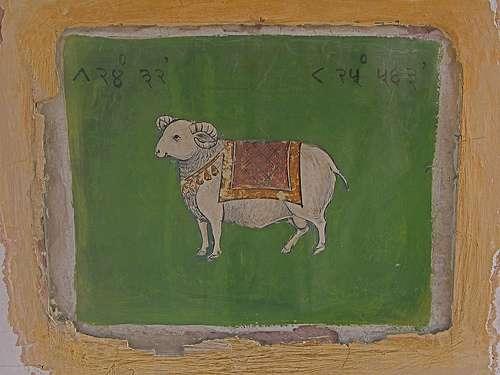 Aries Jaipur