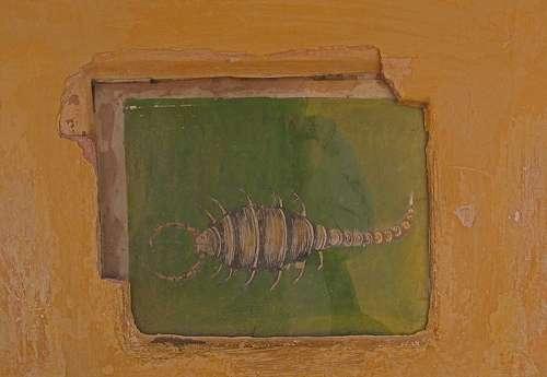 Scorpio Jaipur