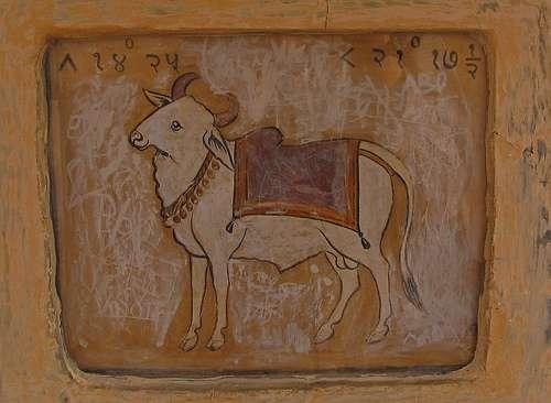 Taurus Jaipur