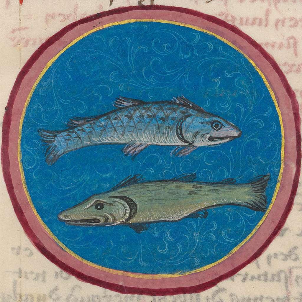 Pisces.15th century