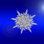 Leo Monthly Horoscope December 2015