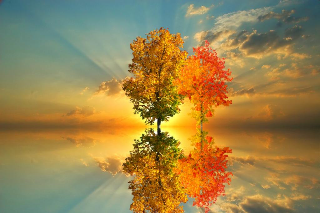 November, trees