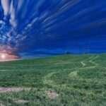 Full Moon Sagittarius: Looking Forward