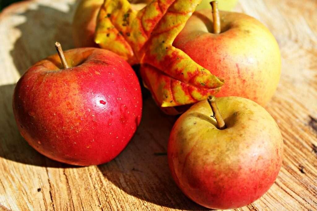 Taurus, apples