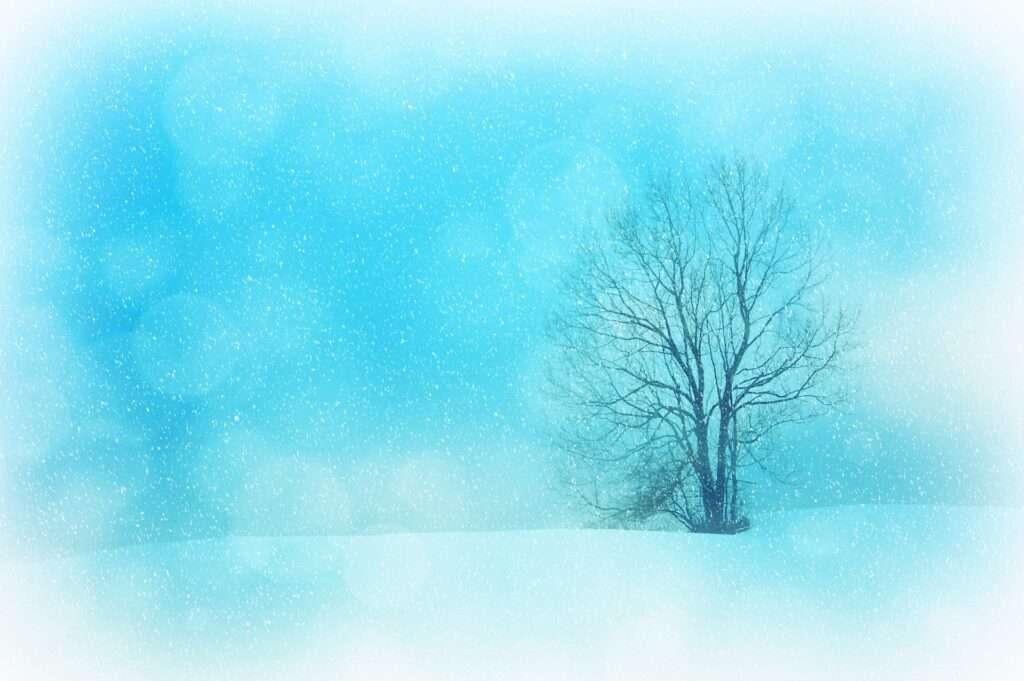 winter, Aquarius