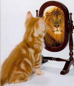 a photo of a pussycat who sees a lion in its reflection