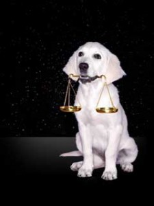 photo of a dog with scales in its mouth, representing Libra
