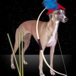 a photo of a dog Sagittarius