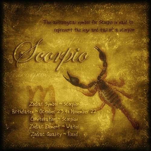 Scorpio Oil Painting