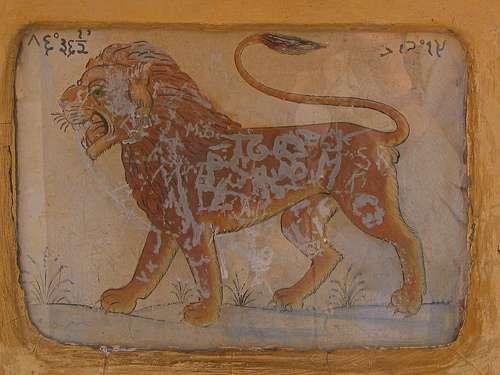 Leo Jaipur