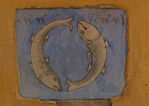 Pisces Jaipur