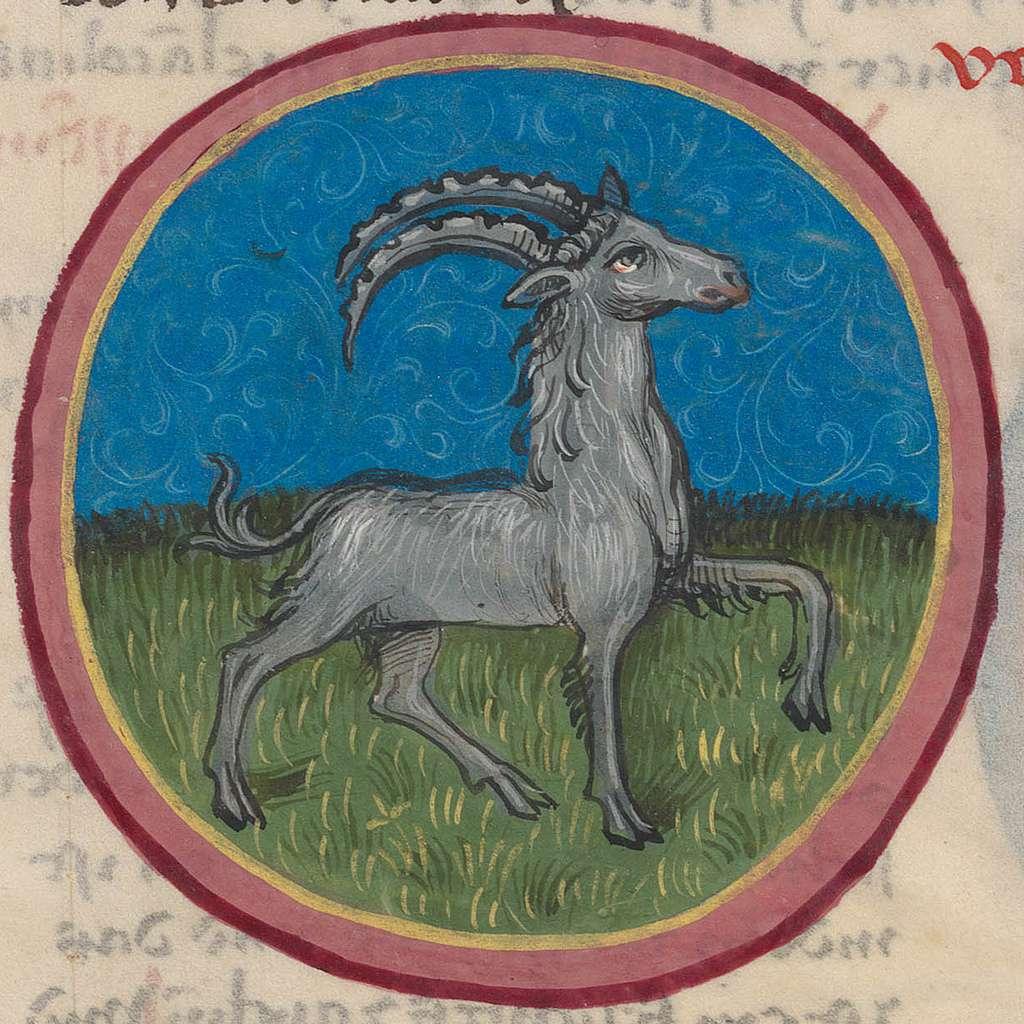 Capricorn.15th century
