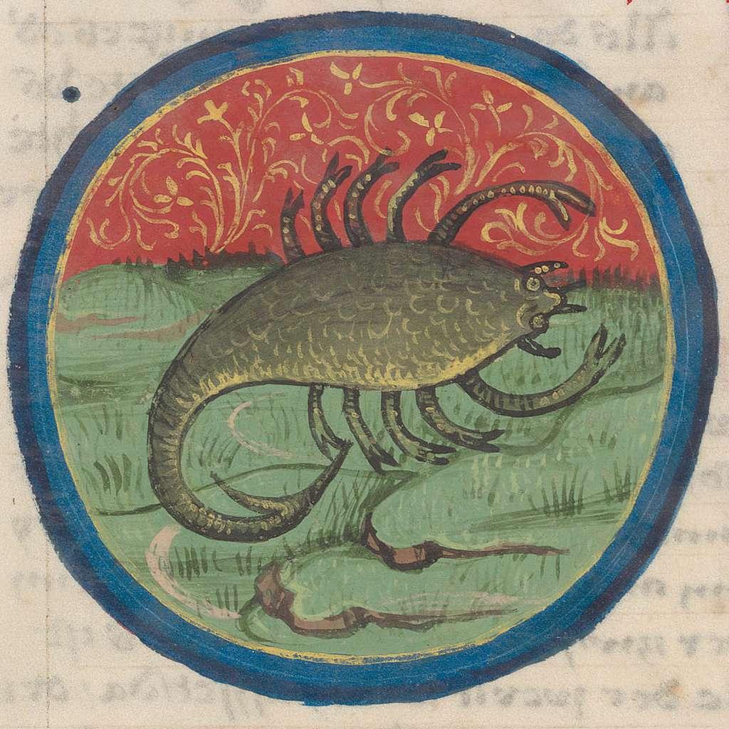 Scorpio.15th century