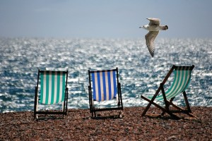 Deckchairs and Seagull