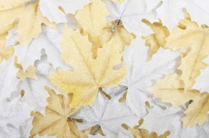 White & gold leaves, Leo