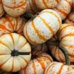 Gourds, Gemini