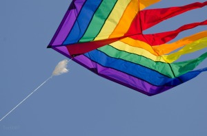 Image of a kite