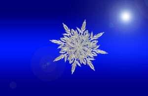 snowflake, Leo