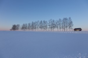 snow, Taurus