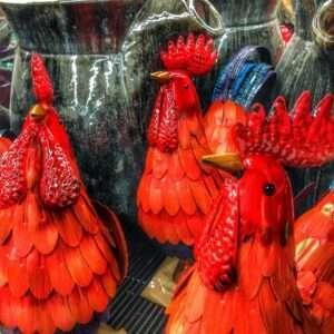 chickens-508491_1280