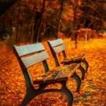Gemini, benches