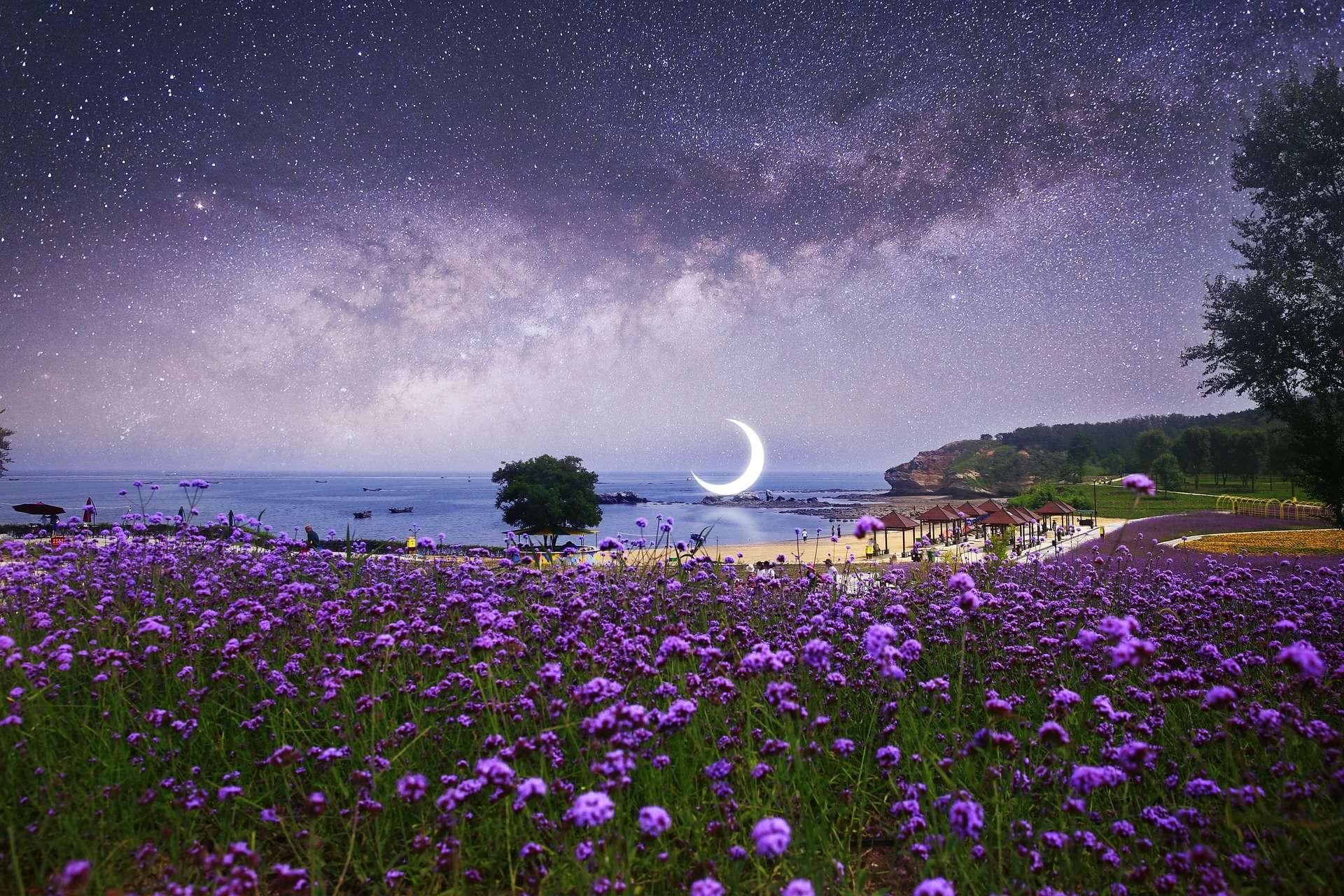 Resultado de imagen para crescent moon in libra