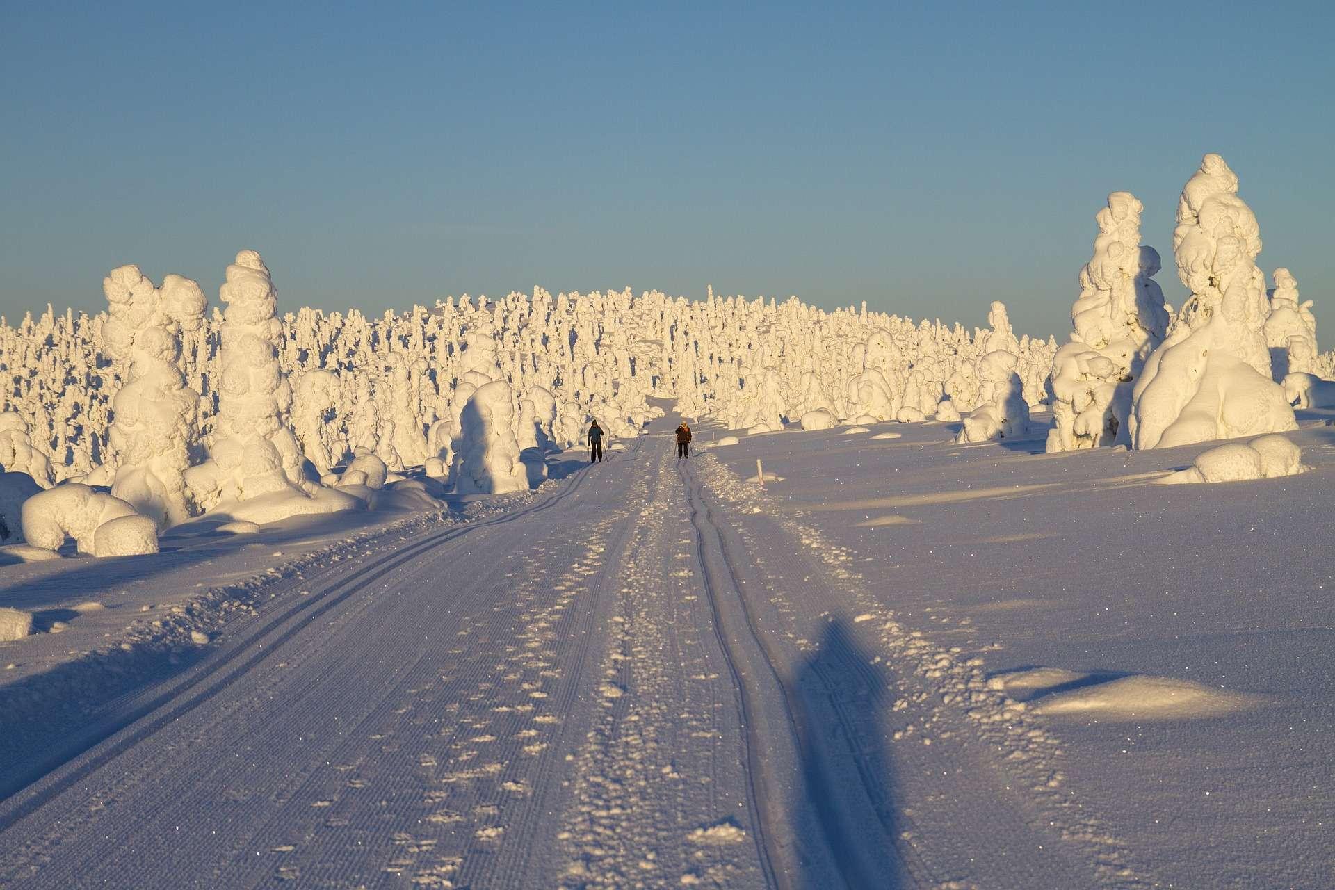 Libra, winter