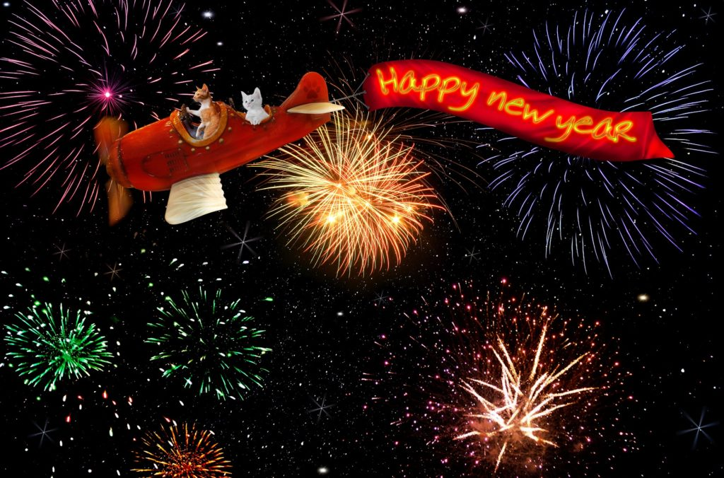 New Year, Taurus