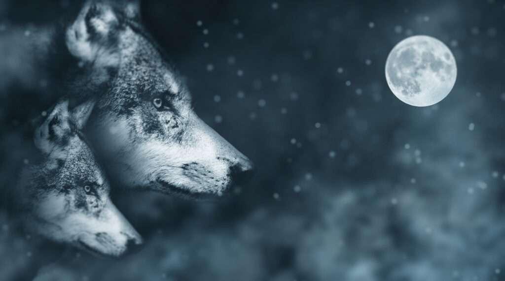 Moon, Capricorn