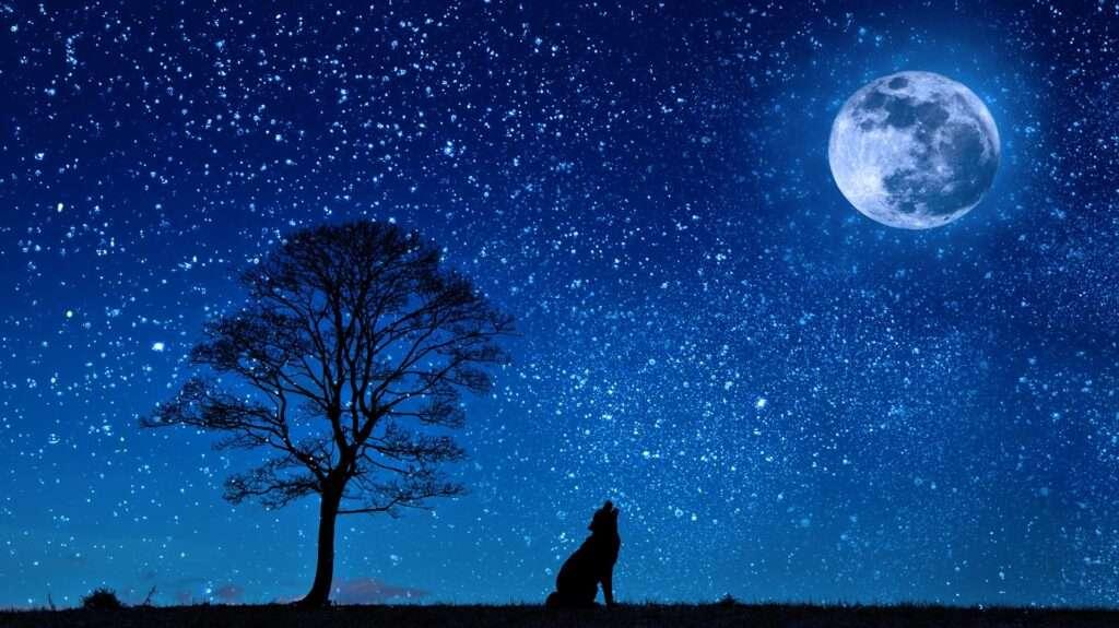 Lunar Eclipse, Full Moon Capricorn