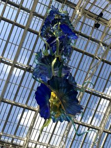 Chihuly Libra
