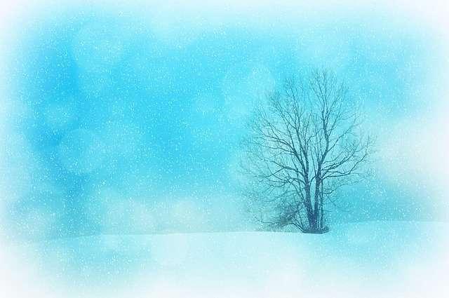 winter, Cancer