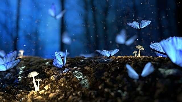 blue butterflies, Sun/Mercury cazimi
