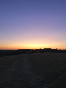 Aquarius, sunset