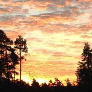 Libra, sunset
