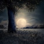 Capricorn June 2020 - Night